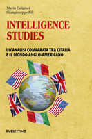 Thumb_intelligence-studies-analisi-comparata-italia-d53b41ce-a885-4984-8308-280287df5fc3